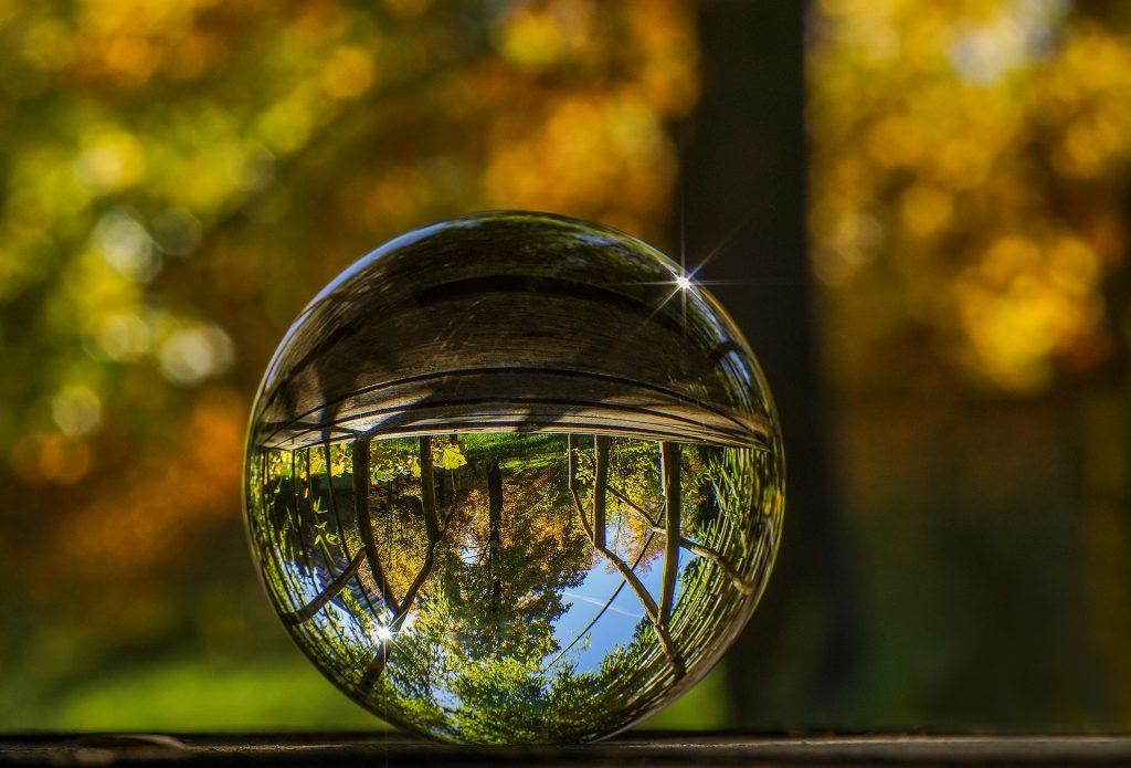 Lensball face à une forêt sombre